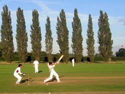 a cricket match at Wrington